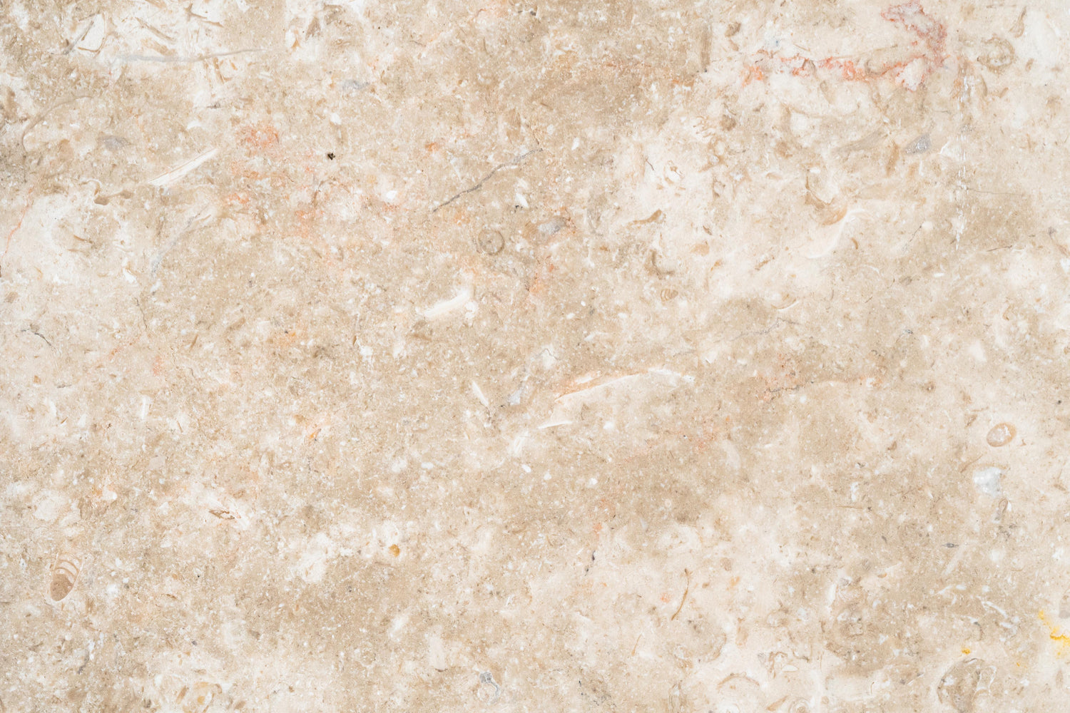 "Ramon Gray Limestone Tile - 12"" x 12"" x 3/8"" Honed"
