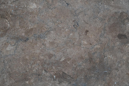 "Shark Skin Limestone Tile - 18"" x 18"" x 1/2"" Honed"