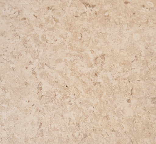 "Shell Stone Shellstone Flagstone - Random Sizes x 1/2"" Unfilled"