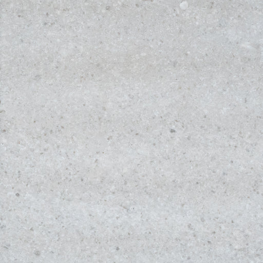 "Full Tile Sample - Tao Gray Limestone Tile - 12"" x 24"" x 1/2"" Honed"