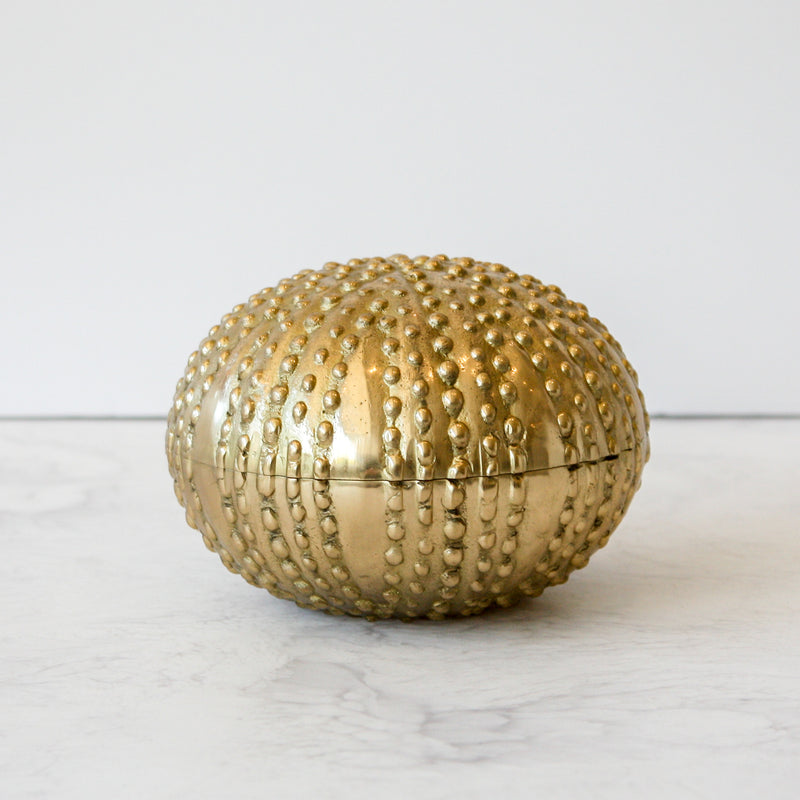 Obelia Box a metal clamshell with sea urchin aesthetic in brass by Made Goods