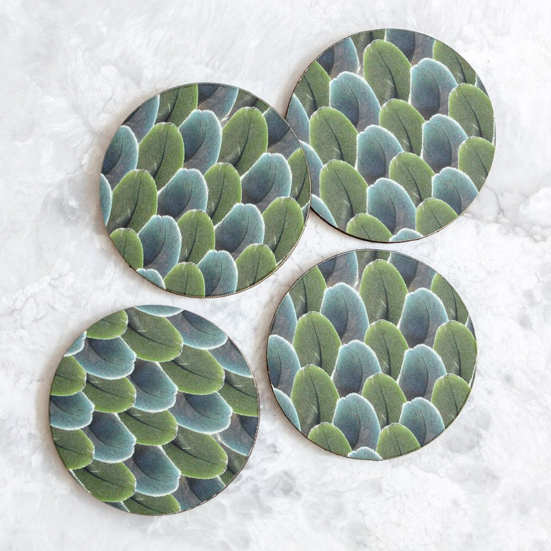 Lady Amherst feathers coasters made of wood and cork in blue and green by Tisch New York