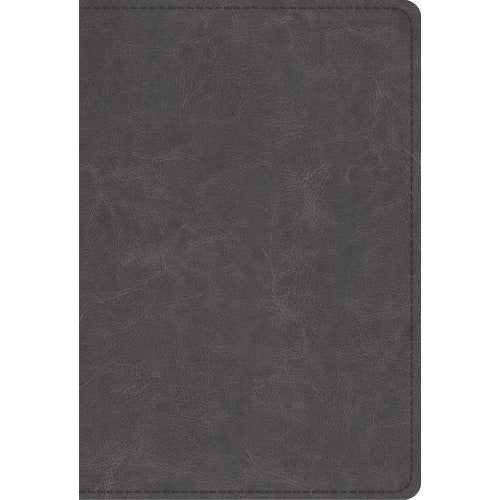 ESV Student Study Bible, TruTone, Gray