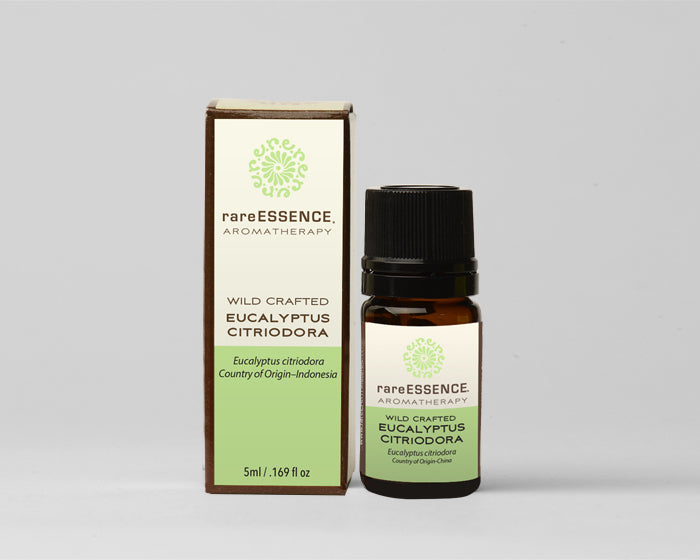 Eucalyptus Citriodora – Essential Oil