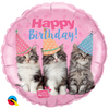 "18"" - Birthday Kittens"