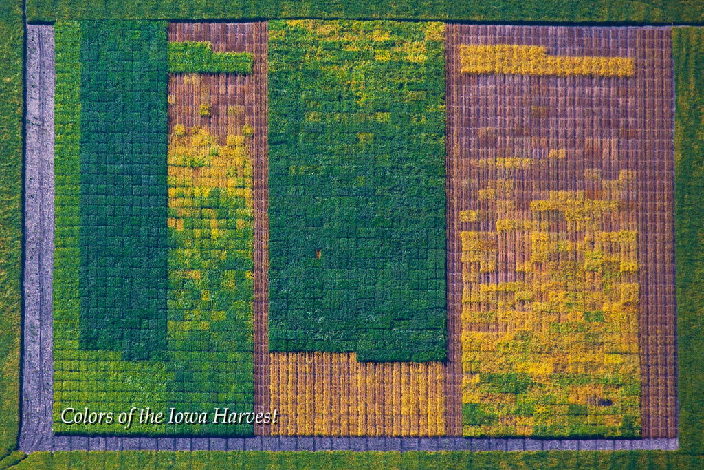 Aerial Photo - Testing One Two Three- from the Colors of the Iowa Harvest Series - Iowa
