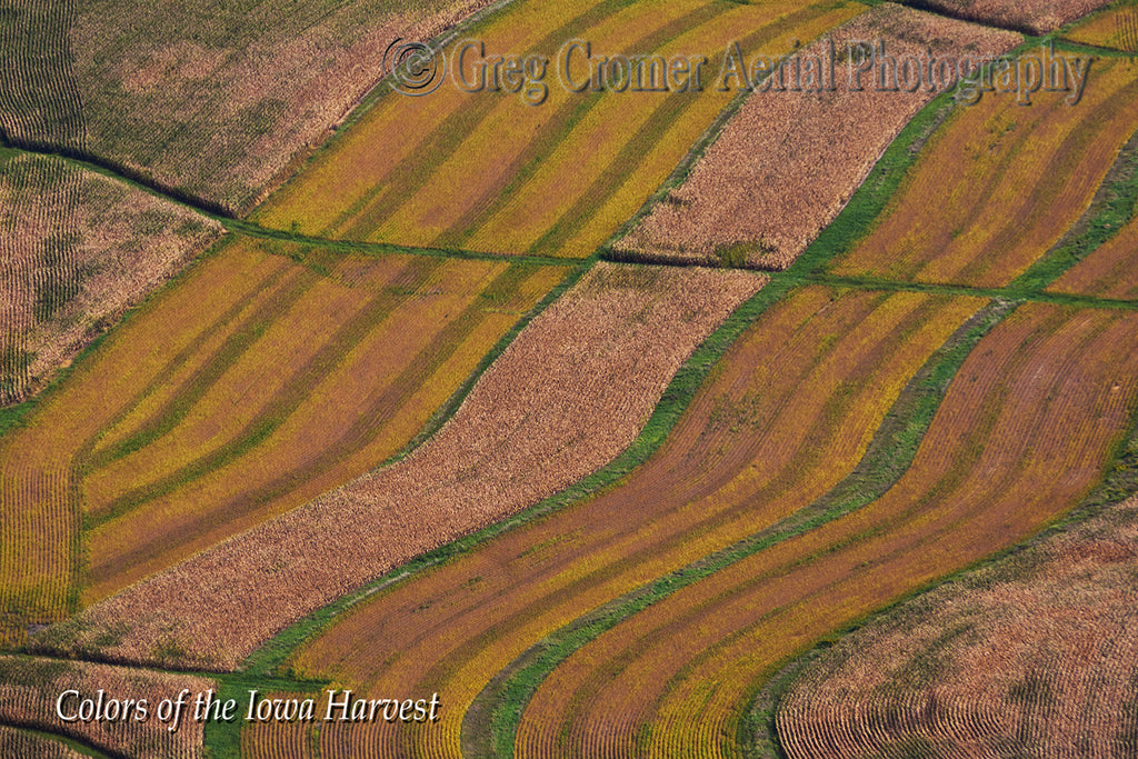 Aerial Photo - Iowa Bacon - from the Colors of the Iowa Harvest Series - Iowa