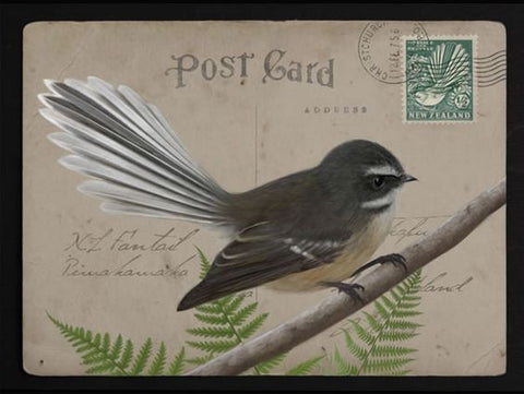 fantail postage greeting card