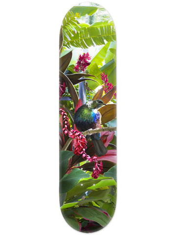 Lucy G Tropical NZ Tui - Skate Deck