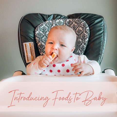 Introducing Foods to Your Baby and When to Do So