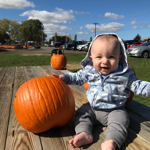 pumpkins are a great source of nutrition for you and your baby