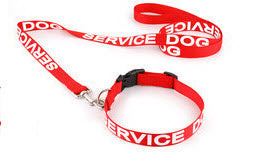 service dog collar and leash