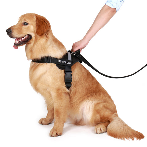 Service Dog Vest w/ Handle Package $250 Value (Med,Large,Xlarge) - USA Service Animal Registration