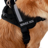 Emotional Support Animal Vest With Handle - USA Service Animal Registration