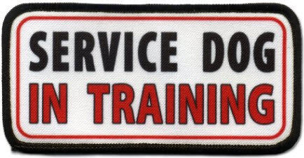 "Service Dog ""In Training"" Embroidered Velcro Patches (set of two)"