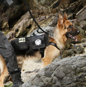 Heavy Duty Tactical Dog Vest & Leash - USA Service Animal Registration