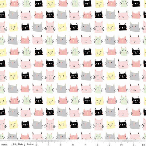 Meow and Forever Heads White - Riley Blake Designs - Cats Kittens -  Quilting Cotton Fabric