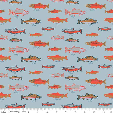Northwest Salmon Light Blue - Riley Blake Designs - Alaska Washington Fish Ocean Outdoors - Quilting Cotton Fabric