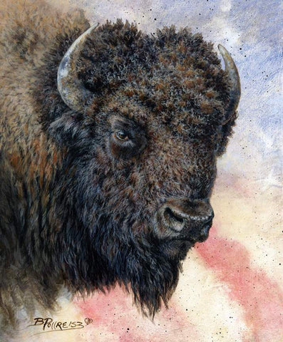 Wild and Beautiful Panel Bison by Riley Blake Designs - Outdoors Recreation Wildlife Buffalo - Quilting Cotton Fabric