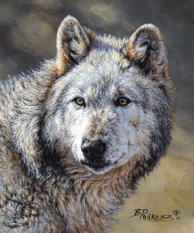 Wild and Beautiful Panel Wolf by Riley Blake Designs - Outdoors Recreation Wildlife - Quilting Cotton Fabric