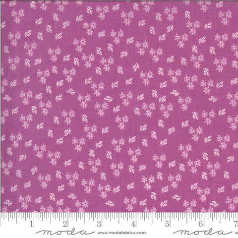 Balboa Jasmine 37594 Fuchsia - Moda Fabrics - Flowers Floral Purple Pink - Quilting Cotton Fabric