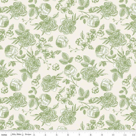SALE Gingham Gardens Lined Floral C10352 Green - Riley Blake Designs - Sketched Flowers Green on Cream - Quilting Cotton Fabric