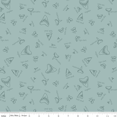 SALE Riptide Fossils C10301 Seafoam - Riley Blake Designs - Sea Ocean Sharks Teeth Names Green - Quilting Cotton Fabric