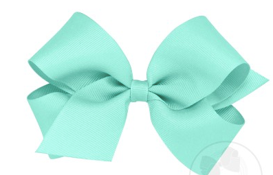 Wee Ones Medium Bow-new aqua