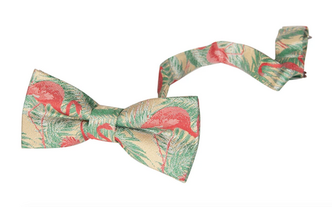 Appaman Bow Tie-flamingo bay