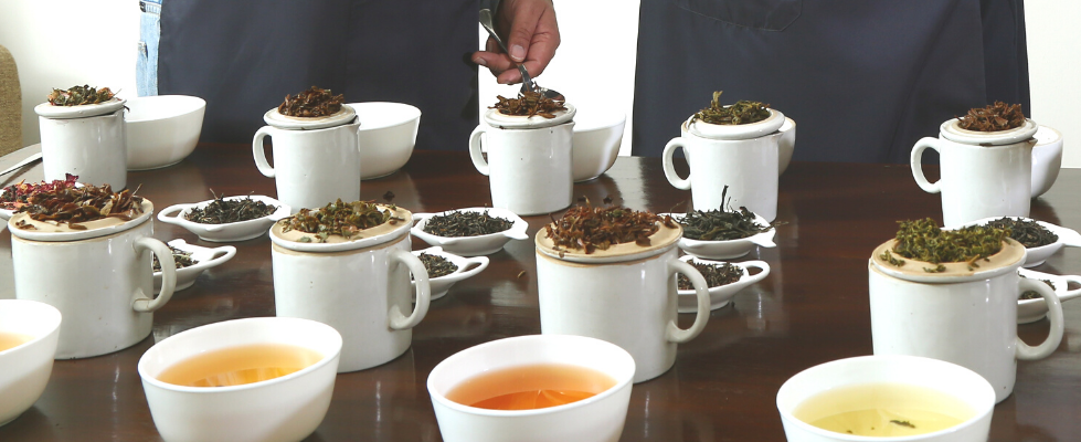 A Complete Guide to Tea Tasting