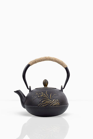 Teacupsfull Cast Iron Teapot