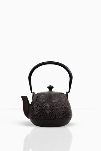 Buy Teapot, Designer Teapot, Cast Iron Teapot, Tetsubin Teapot, Buy Teapot online at Teacupsfull