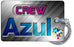 AZUL Airlines NEW Logo Silver