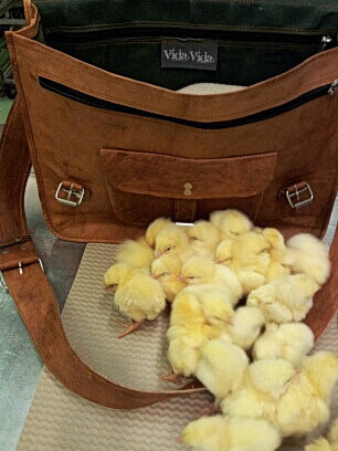 Vida Vida Leather Satches For Chicks of All Ages