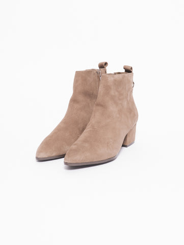 STEVE MADDEN CLOVER Stivaletto scamosciato Taupe Trymeshop.it