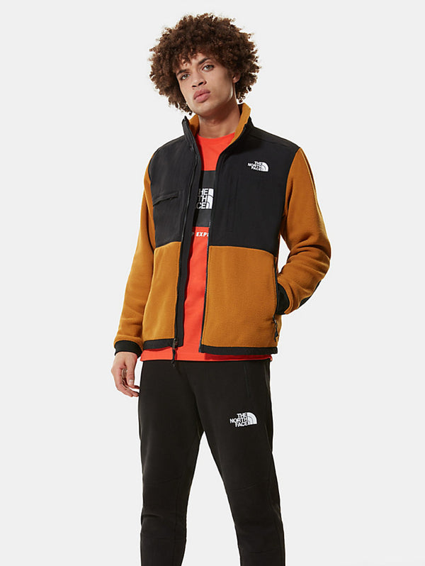 THE NORTH FACE-Giacca in Pile - Timber Tan-TRYME Shop