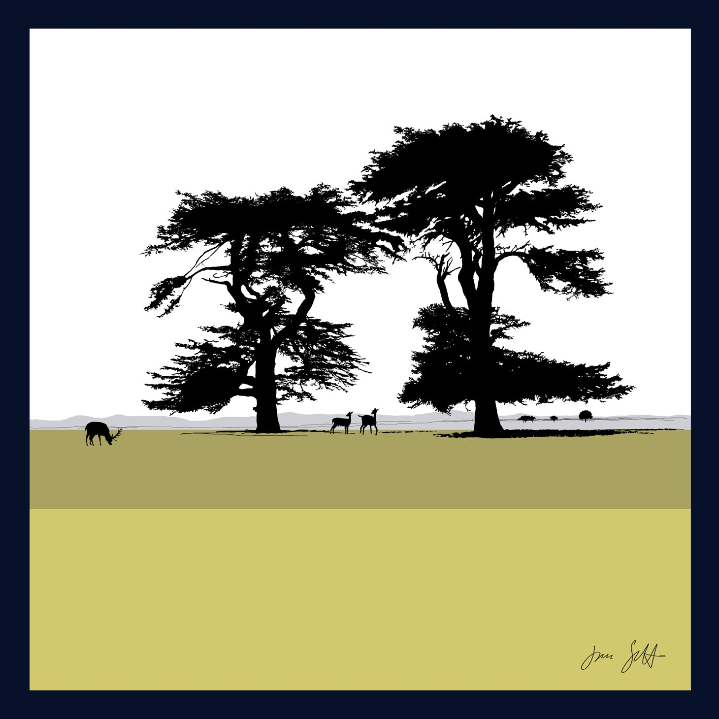 FRAMED Cedars, Holkham, Norfolk. Arboretum Colour Block Fine Art Print - 9 colours available