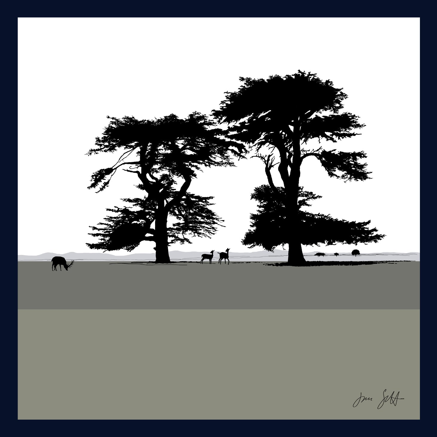 Cedars, Holkham, Norfolk. Arboretum Colour Block Fine Art Print - 9 colours available