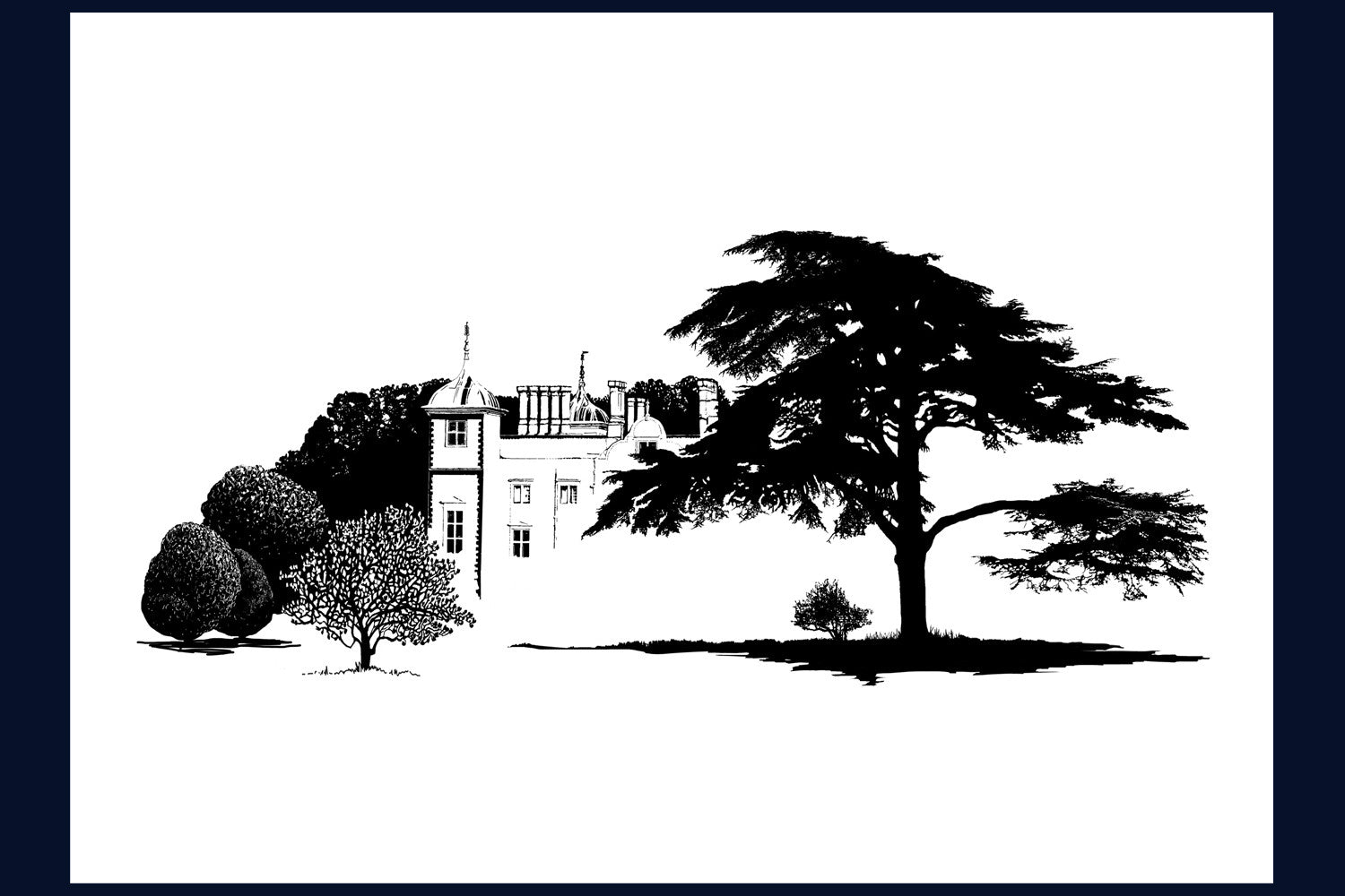 Arboretum Collection 'Cedar, Blickling Hall, Norfolk' Limited edition (50) Fine Art Print