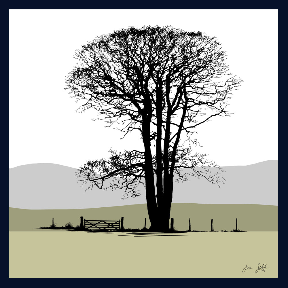 Beech, Felbrigg, Norfolk. Arboretum Colour Block Fine Art Print - 9 colours available