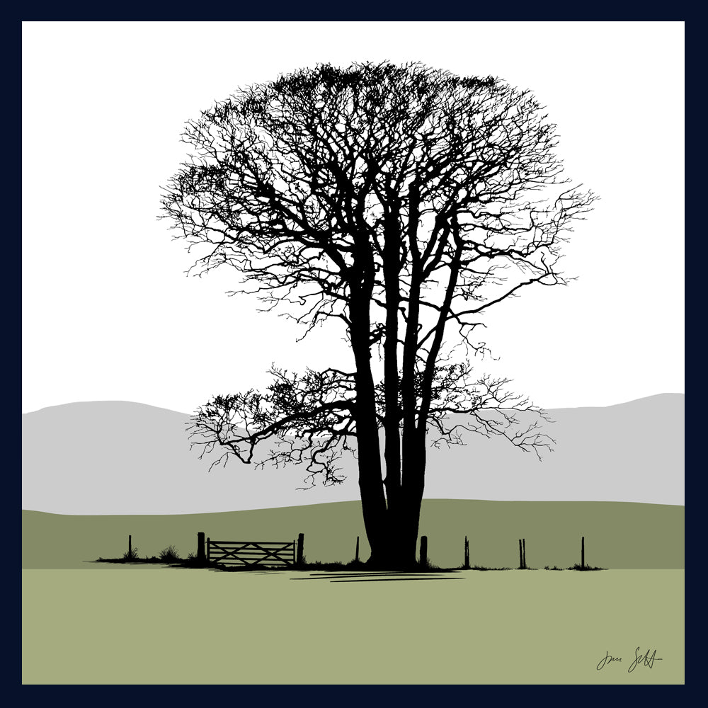 FRAMED Beech, Felbrigg, Norfolk. Arboretum Colour Block Fine Art Print - 9 colours available