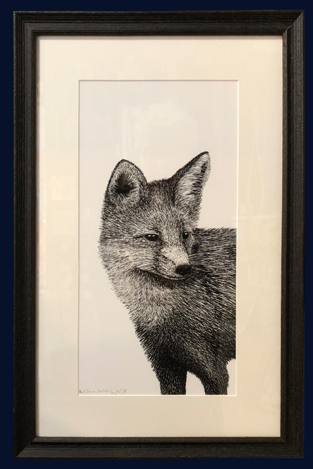 Framed: A Hard Stare: Fox Cub.  Limited Edition of 50 Fine Art Print