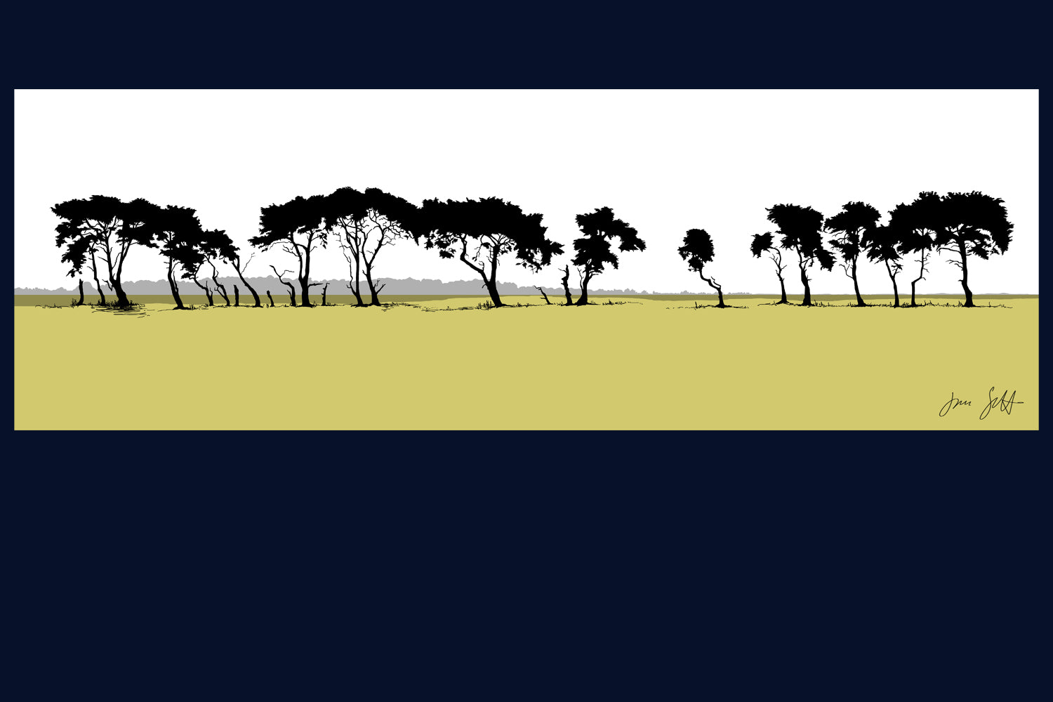 Gooderstone Pines, Breckland, Norfolk. Arboretum Colour Block Collection Fine Art Print - available in 9 colours