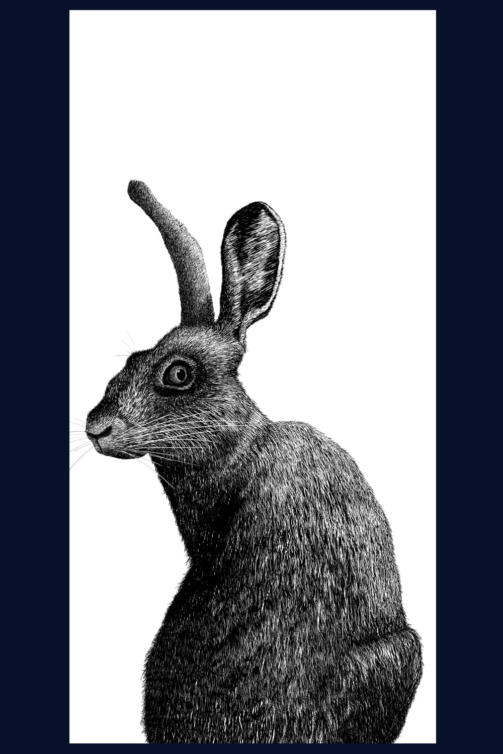 A Hard Stare: Hare. Limited Edition of 50 Fine Art Print