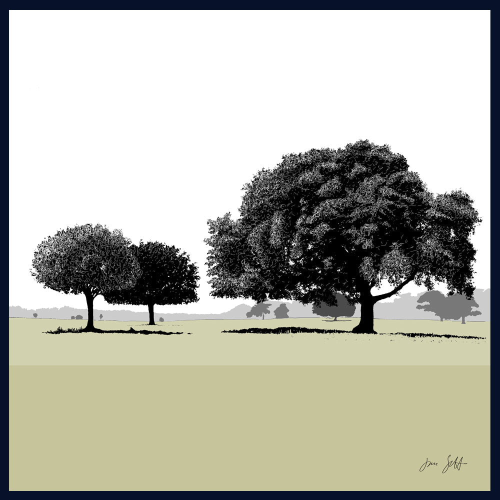 Holm Oaks, Holkham, Norfolk. Arboretum Colour Block Fine Art Print - 9 colours available