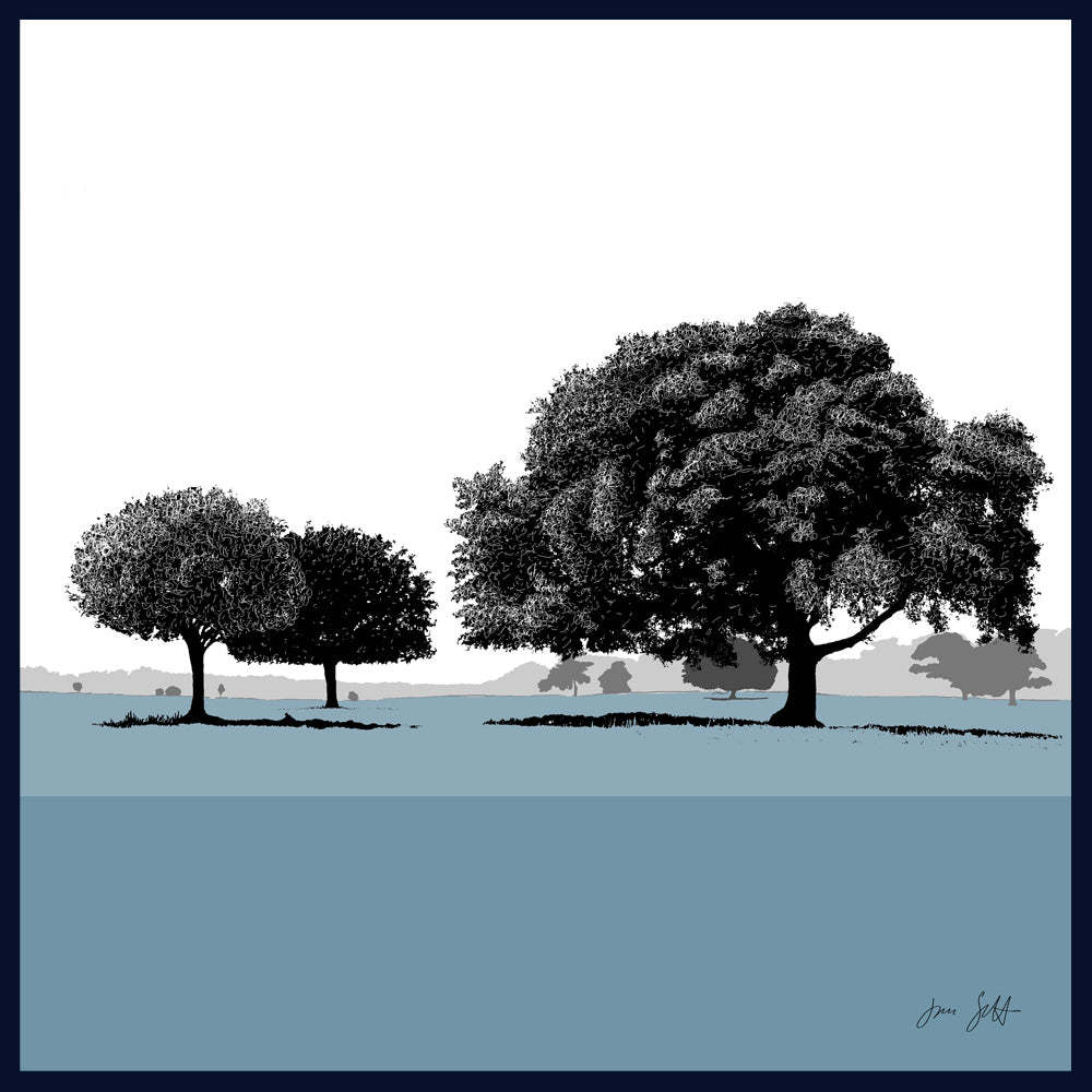 FRAMED Holm Oaks, Holkham, Norfolk. Arboretum Colour Block Fine Art Print - 9 colours available