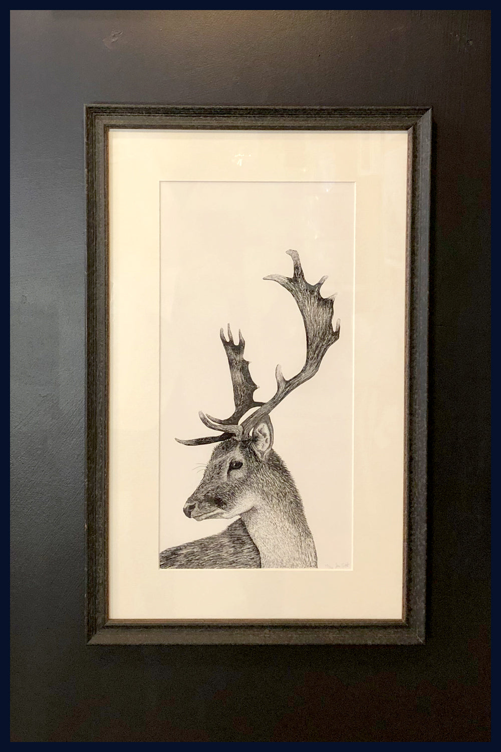 Framed: A Hard Stare: Stag. no.12  Limited Edition of 50 Fine Art Print