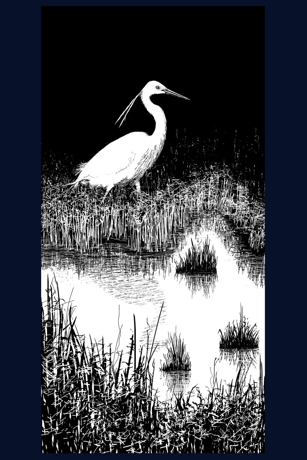 Framed Little Egret no.6 of 50 Limited Edition Fine Art Print