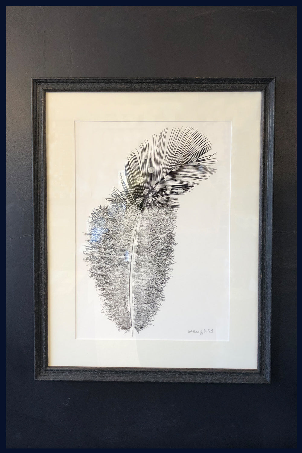 FRAMED 'Lost Plume' Limited Edition of 50 Fine Art Print