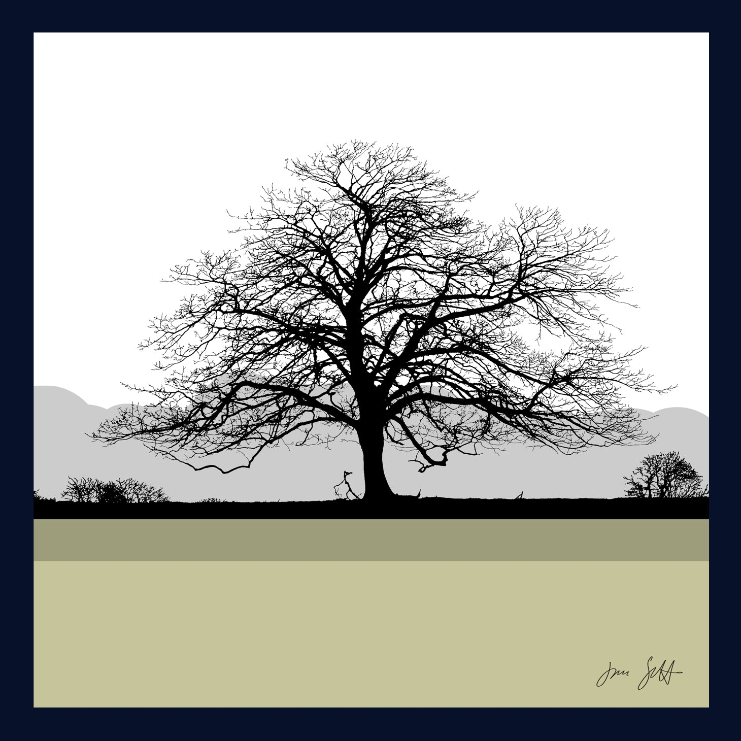 FRAMED Sycamore, Felbrigg Hall, Norfolk. Arboretum Colour Block Fine Art Print - 9 colours available